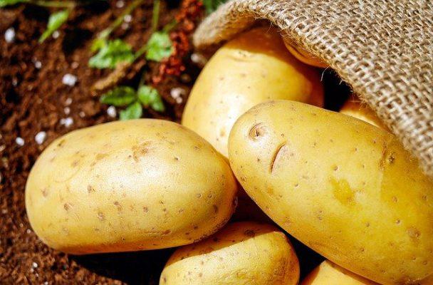 Khoai tây có tốt cho chế độ ăn kiêng?